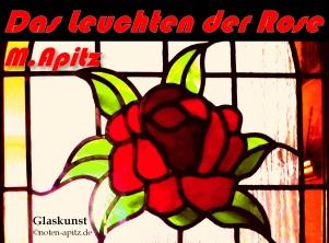 Das Leuchten der Rose M. Apitz; Glasfenster Sparte: 20.+21. Jh. Konzert