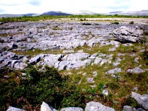 "Burren National Park (An Bhoireann)-""steiniger Ort""); Karstlandschaft Nordwesten des County Clare; Irland ©noten-apitz.de; Bildquelle: Häckel"