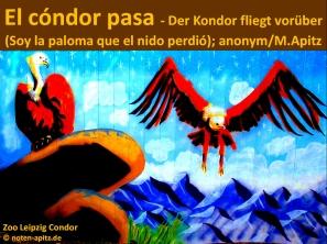 El cóndor pasa – Der Kondor fliegt vorüber (Soy la paloma que el nido perdió); anonym / M. Apitz; Sparte: Lateinamerika Volkslied