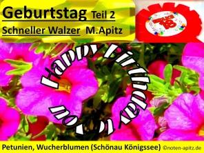 Geburtstag Teil 2, Schneller Walzer M. Apitz (Manfred Apitz); Petunien, Wucherblumen (Schönau Königssee) Sparte: 20. +21. Jh. Konzert