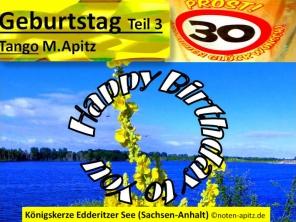 Geburtstag Teil 3, Tango, M. Apitz (Manfred Apitz); Königs-Kerze Edderitzer See (Sachsen-Anhalt) Sparte: 20. +21. Jh. Konzert