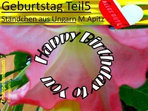 Geburtstag Teil 5, Ständchen aus Ungarn, M. Apitz (Manfred Apitz) Sparte: 20. +21. Jh. Konzert