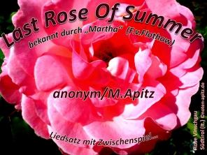 Last Rose of Summer (Liedsatz) anonym / M. Apitz (Manfred Apitz); Vinschgau Südtirol (It.) Sparte: Irland Volkslied
