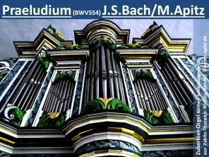 Praeludium (BWV554) J. S. Bach/M. Apitz (Bachwerk-Verzeichnis 554 Johann Sebastian Bach/Manfred Apitz); Zuberbier-Orgel Köthen Schlosskapelle (aus Zabitz-Thurau b. Köthen, Anhalt) Sparte: 17.+18. Jh. Konzert