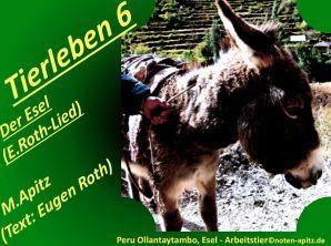Tierleben 6 Der Esel (E. Roth-Lied) – Eugen Roth-Lieder; Manfred Apitz (Text: Eugen Roth); Peru Ollantaytambo, Esel – Arbeitstier Sparte: 20.+21. Jh. Konzert