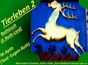 "Tierleben 2 Rothirsch (E. Roth-Lied) 5 Schwanensang – Eugen Roth-Lieder; Manfred Apitz (Text: Eugen Roth); Wermsdorf bei Oschatz, Sachs. Hotel ""Zum Goldnen H."" Sparte: 20.+21. Jh. Konzert"