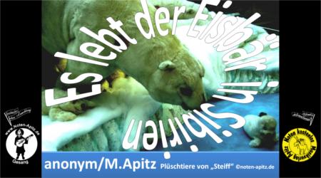 Es lebt der Eisbär in Sibirien - Noten Apitz